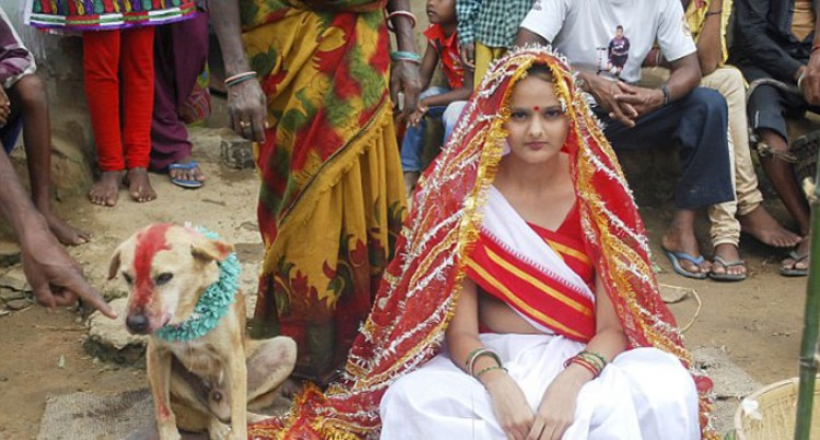 Girl, 18, Marries a Stray Dog