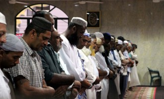 Our Muslims Pray For Peacekeepers