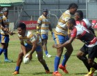 Vodafone Cup 2014 Reaches New Heights