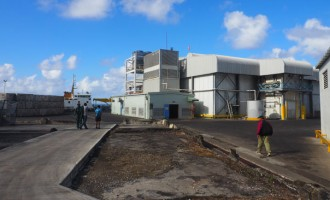 Bumble Bee To Strengthen  PAFCO's Levuka System