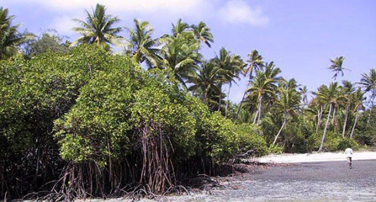 Legal Awareness About Coastal Growth