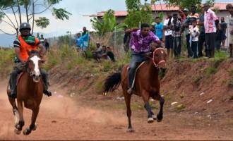 Sweet Revenge For Babasiga Lion