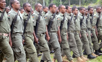 Military Yet To Decide On Old Guns
