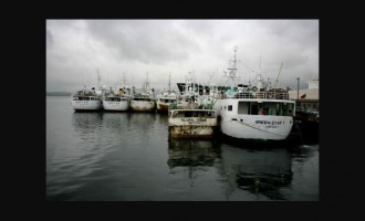 Fisheries Gives Initiative Thumbs Up