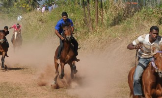 Diwali Horse Race In Ba