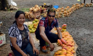 Sumintra Sells Mangoes For Diwali