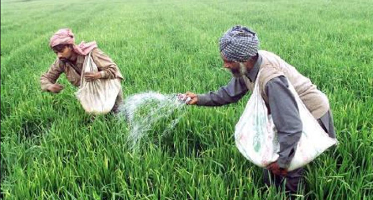 Fertiliser Subsidy Extended To Non-Sugar Farmers