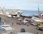 Ship Operators Confident Of Freight Review