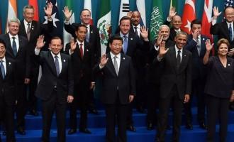 G20 Summit: Koalas And Shirtfronting