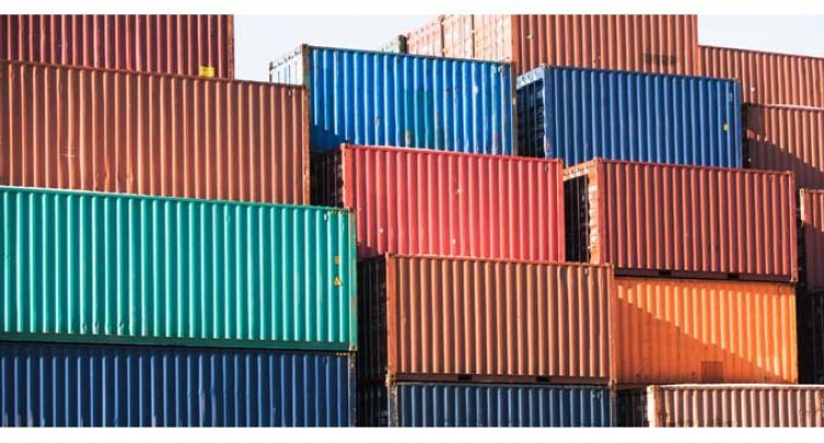 High Risk Pests Found In Shipping Containers