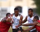 Ryan: Fiji On Track