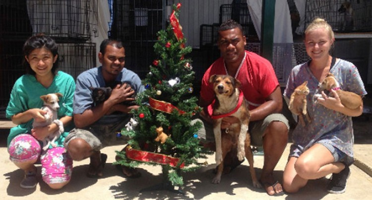 Animals Fiji Asks For West Help