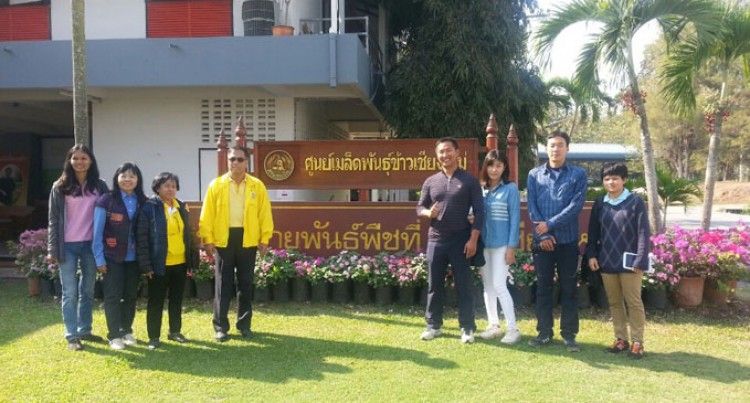 Grace Road Learns From Thailand's Rice Farming Methods
