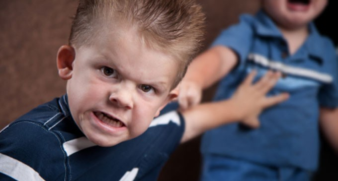 Eating Chicken Wings Makes Kids Aggressive?