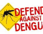 Clean Up! Stop Spread Of Dengue