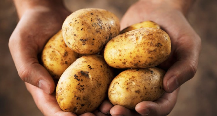 Potato Shortage Pressure To Ease As Commission Releases Price To Importers