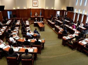 Youth Parliament 2014. Photos: RAMA