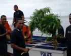 More Drug Find In Kadavu