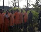 Inmates Start Pine Planting