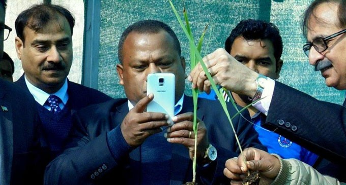 India To Assist Fijian Agriculture Sector