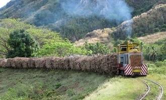 No Election Plan Yet For Sugar Council: PM