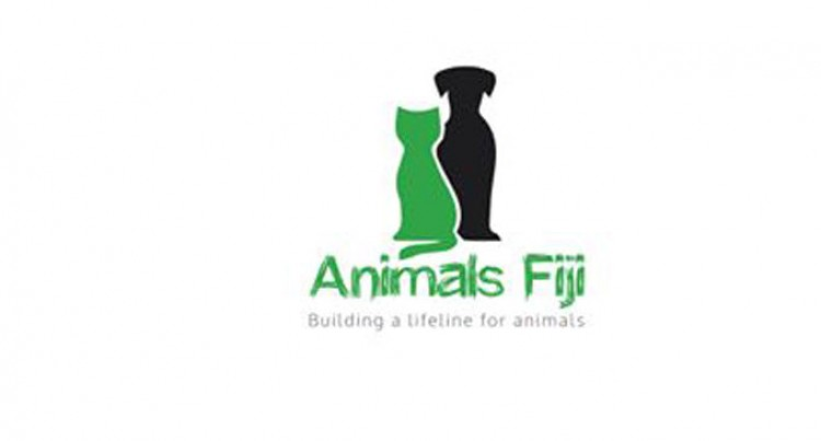 Animals Fiji Encourage  Communities To Desex Pets