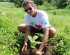 Denarau Island 'Adopt A Tree'