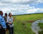 Vanuabalavu Farmers Advised On Food Security