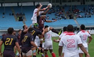 Pampas Walloped Tonga