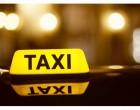 Pirate Taxi Operators Under Scrutiny