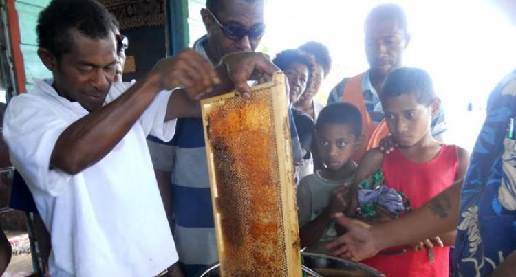 Honey Money For Villagers