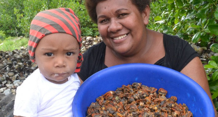 Sea Mussels Pay Well For Family