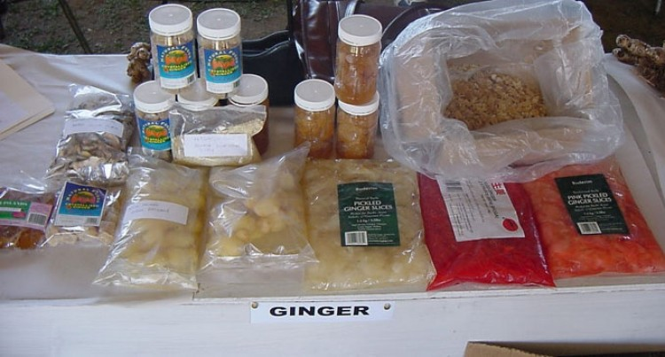 Ginger Export Potential Explored