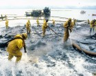 Seafaring Tales That Save Lives