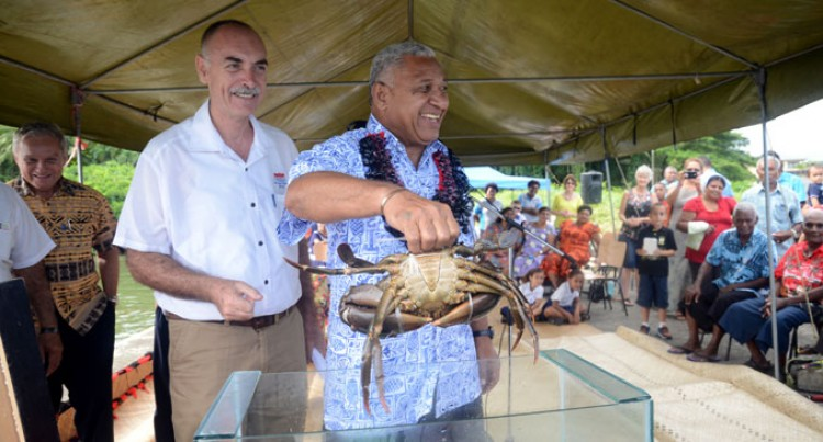 Potential Seen To Develop Mud Crab Into National Product