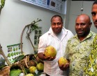 Breadfruit Expansion Encouraged