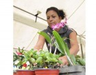 Florists Showcase At Market Day