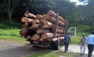 Roads, Transport Authorities Combat Overloading