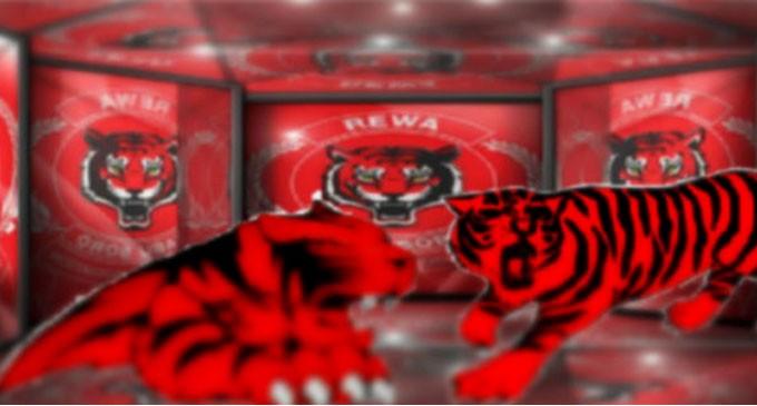 Rewa Target 5 Games