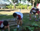 Edupia Students Spruce Up Loloma Home