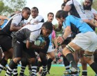 Fijian Warriors  Down Teros
