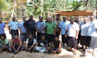 Ministry Supports Lakeba Pine Plan