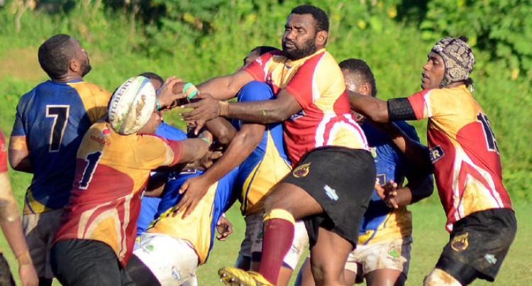 Maroons Edge Northland