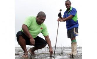 Company Leads Move To Protect Coastal Area