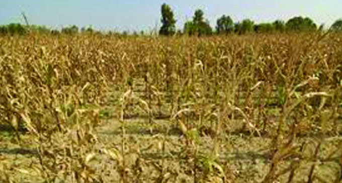 Plans In Place For Dry Spell Period