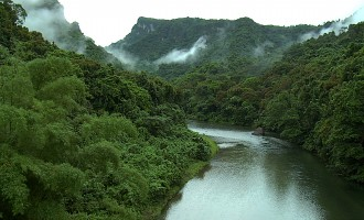 Landowners support move to conserve forest, river