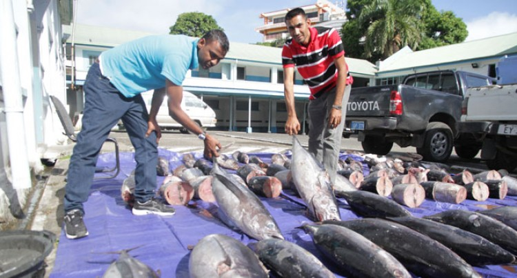 Four In Custody For Fishy Business