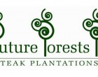 Future Forests Signs $1.6m Seedling Contract With SPC