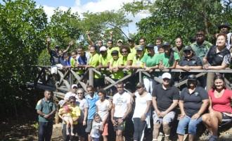 Denarau Group Replenish Mangroves