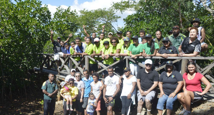 Denarau Group Replenish Mangroves